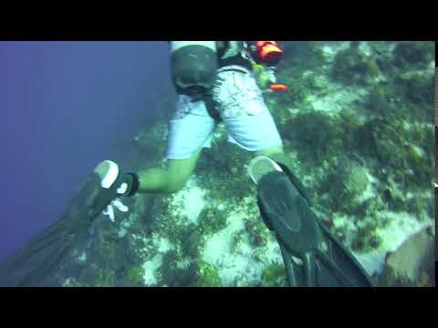 April 2018 Cozumel – our dive masters dive boots are converse chuck Taylors :)