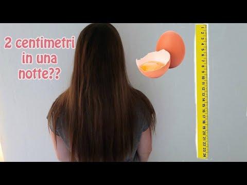 Per olio di capelli da applicazione dellEgitto