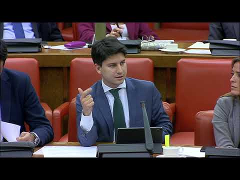 Diego Gago en la Comisión de Transición Ecológica y Reto Demográfico del Congreso