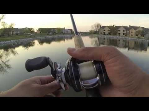 Bass Fishing at Asherton Blvd Ponds 5/7/14