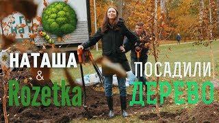 Спасибо за деревья! Финал акции «Посади дерево» с Rozetka.ua