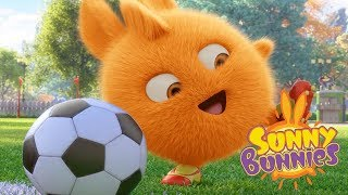 Cartoons for Children | Sunny Bunnies BUNNY WORLD CUP | Funny Cartoons For Children