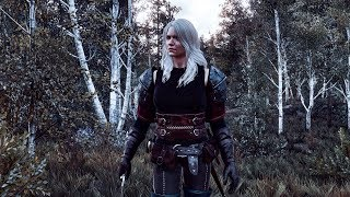 the witcher 3 wild hunt all costumes - TH-Clip