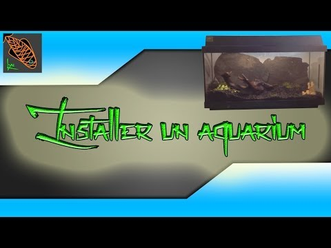 comment monter aquarium