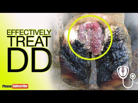 Alimente recomandate in cancerul de piele
