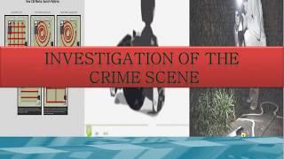How to Investigate A Crime Scene?
