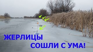 Ловля на жерлицы зимняя рыбалка