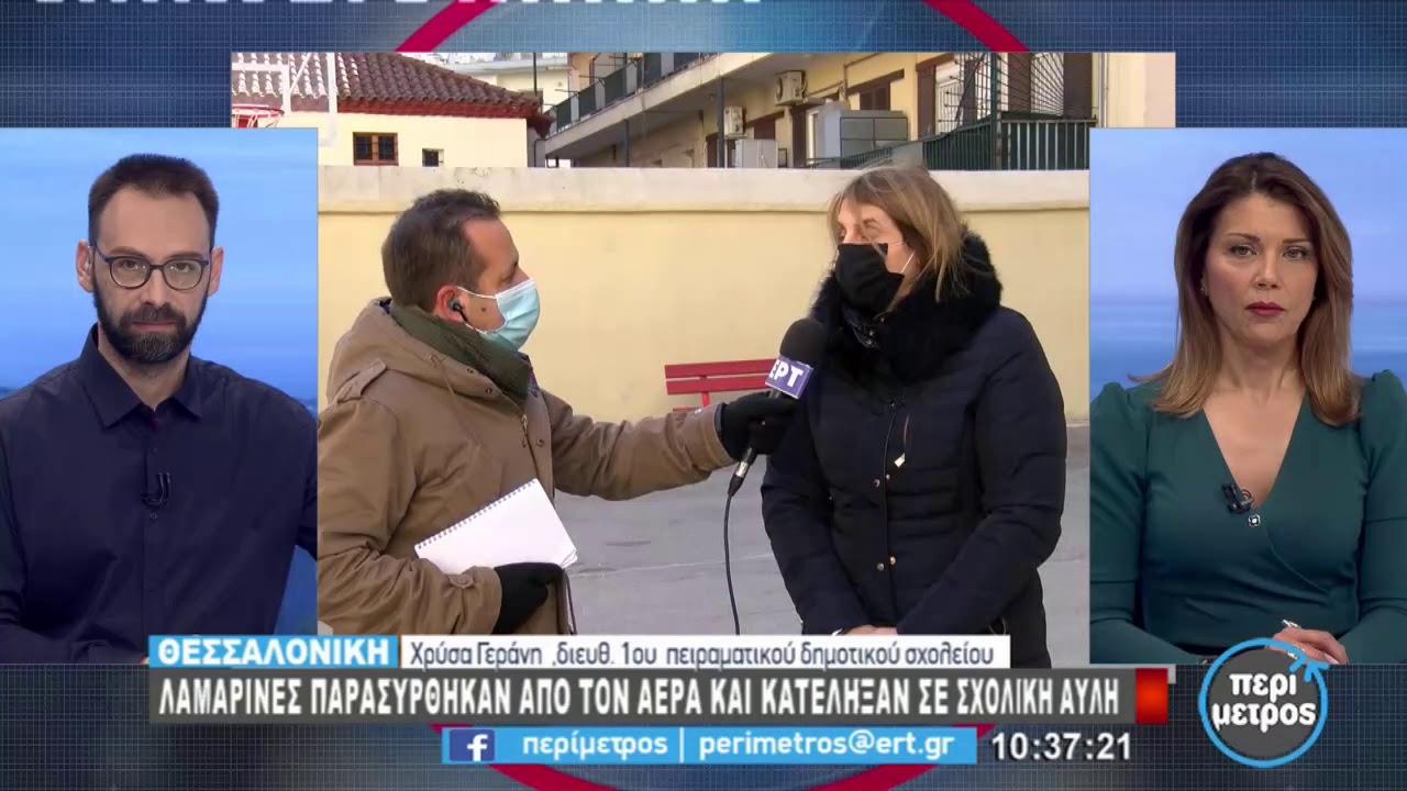 Λαμαρίνες παρασύρθηκαν από τον αέρα και κατέληξαν σε σχολική αυλή | 12/2/2021 | ΕΡΤ