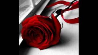 ROMANCE - صبرك يا قلبي - ياسر حبيب تحميل MP3