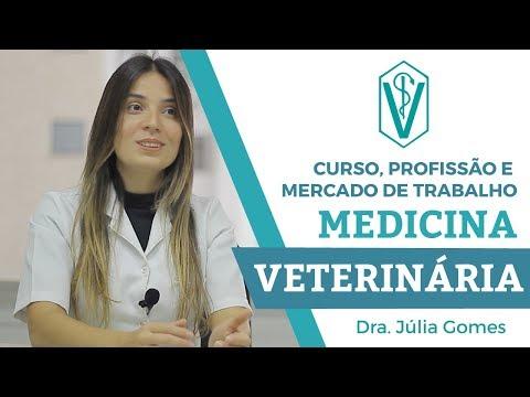 VETERINÁRIA - CURSO, PROFISSÃO E MERCADO DE TRABALHO