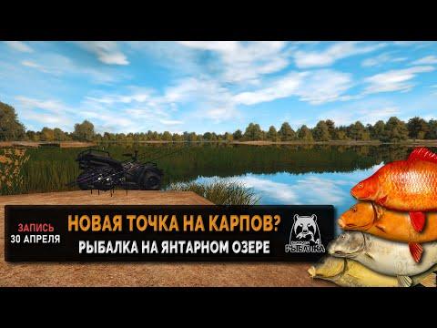 Новая точка на янтарном озере?