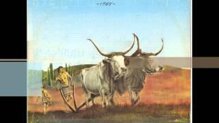 Grupo Logos - 1985 - Mão No Arado - 1985.wmv
