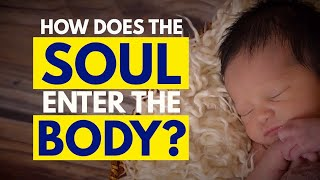 How And When Does The Soul Enter The Human Body & Where Does It Reside| Daaji | Heartfulness