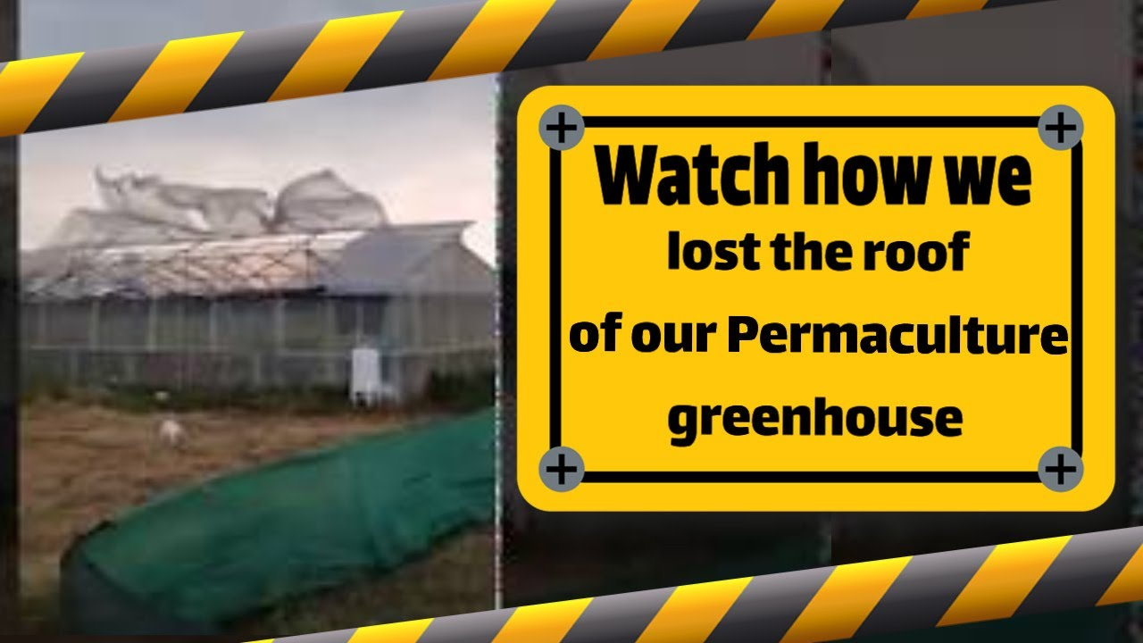 Help us to repair our permaculture green house after the storm