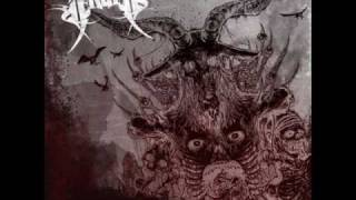Arsis - Sick Perfection