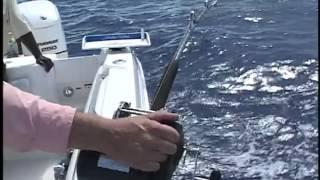 preview picture of video 'Captain Ron's Ocean Explorer - Bahamas Deep Drop Fishing'