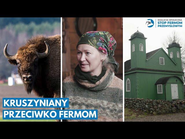 Krynki videó kiejtése Lengyel-ben