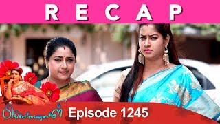 RECAP : Priyamanaval Episode 1245, 18/02/19