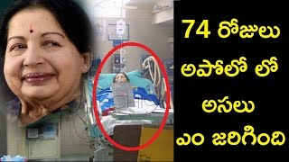 What Happened To Jayalalitha In Apollo Hospital During Those 74 Days  Doctors Reveal The Facts