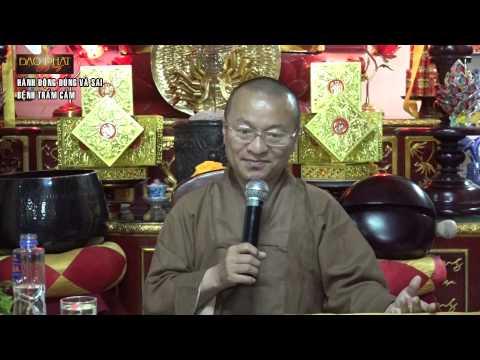 Vấn đáp: Thiểu dục tri túc, ăn chay trường, lập gia đình trễ, để trở thành Phật tử, Kinh Phật cho người tại gia, hành động đúng và sai, bệnh trầm cảm, trở về đạo Phật nguyên chất, học Phật trong thời hiện đại
