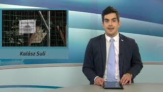 TV Budakalász / Budakalász Ma / 2021.02.04.