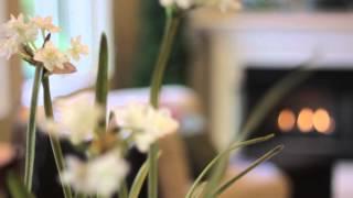 4075 Cedarwood Court Brea California | Olinda Ranch Single Story Home for Sale