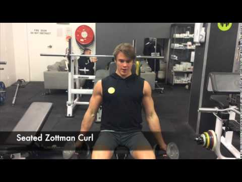 Exercise: Seated Zottman Curl