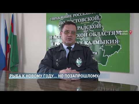 Система «Меркурий» помогла выявить продукцию неизвестного происхождения в Ростовской области