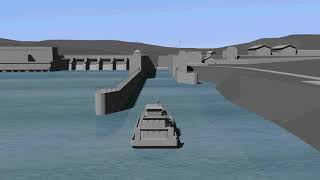 Watch Video - Asian Carp Deterrence Animation (Audio Described)