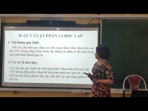 Sinh học 12: Ôn tập Qui luật di truyền học của Menden, Nguyễn Thị Oanh, THPT Trần Nhật Duật