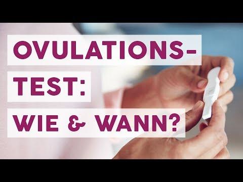 Ovulationstest: Was bringt der Fruchtbarkeitstest und wie funktioniert er? | MOM-LIFE