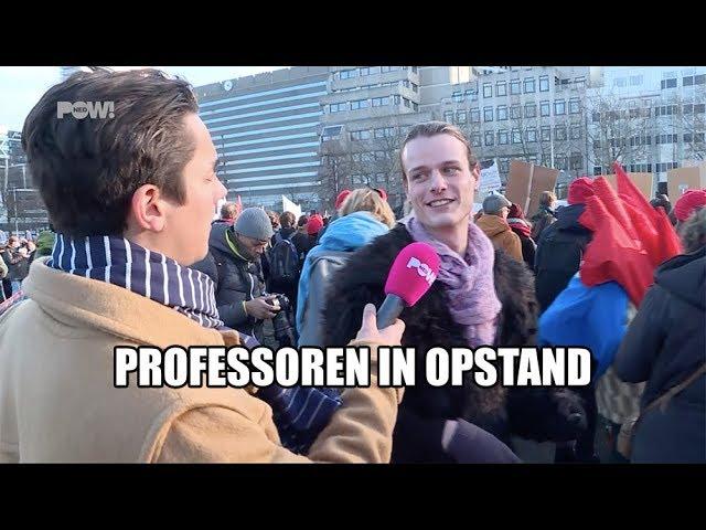 Professoren in opstand