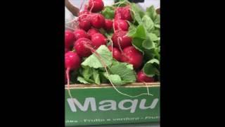 ecco come ordinare a Maquva