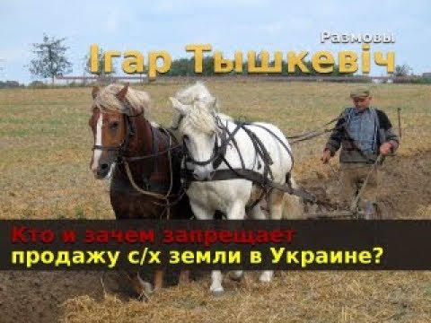 Кто и зачем запрещает продажу сельхозземель в Украине?