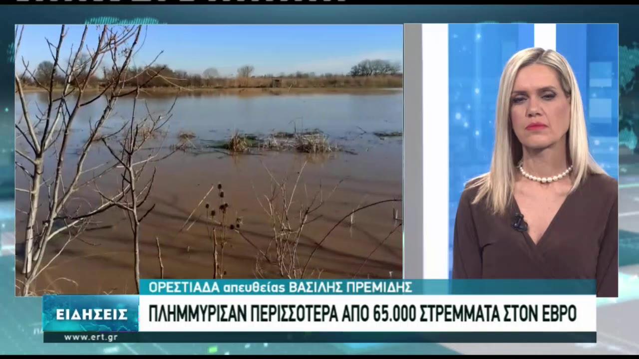 Αποζημιώσεις ζητούν οι πληγέντες από τις πλημμύρες στον Έβρο | 14/1/2021 | ΕΡΤ