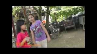 preview picture of video 'July 27th, 2013:  Ostrich Farm, Port Dickson, Negeri Sembilan, Malaysia   Video 4 of 7'