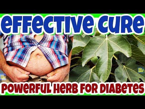 Hohe Zucker Insulin hilft nicht im Blut