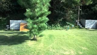 ワイルドキッズ 岬オートキャンプ場のイメージ