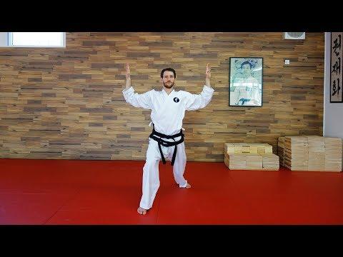 18. HYONG - CHOI-YONG (langsam) - Taekwondo Form