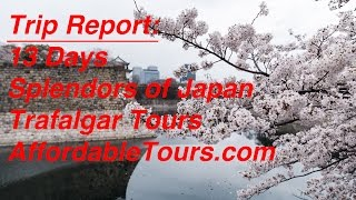 Review | Splendors of Japan | Trafalgar Tours