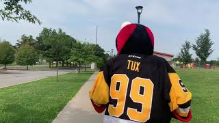 [WBS] Tux in training