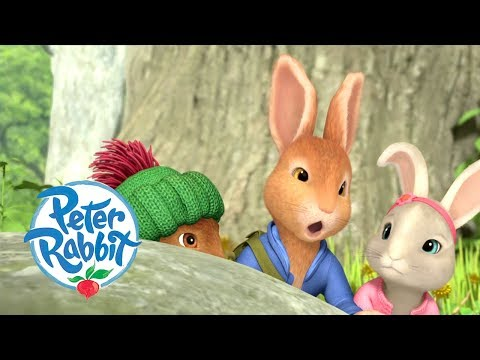 , title : 'Peter Rabbit - Meeting all the Rabbits and Friends | Cartoons for Kids