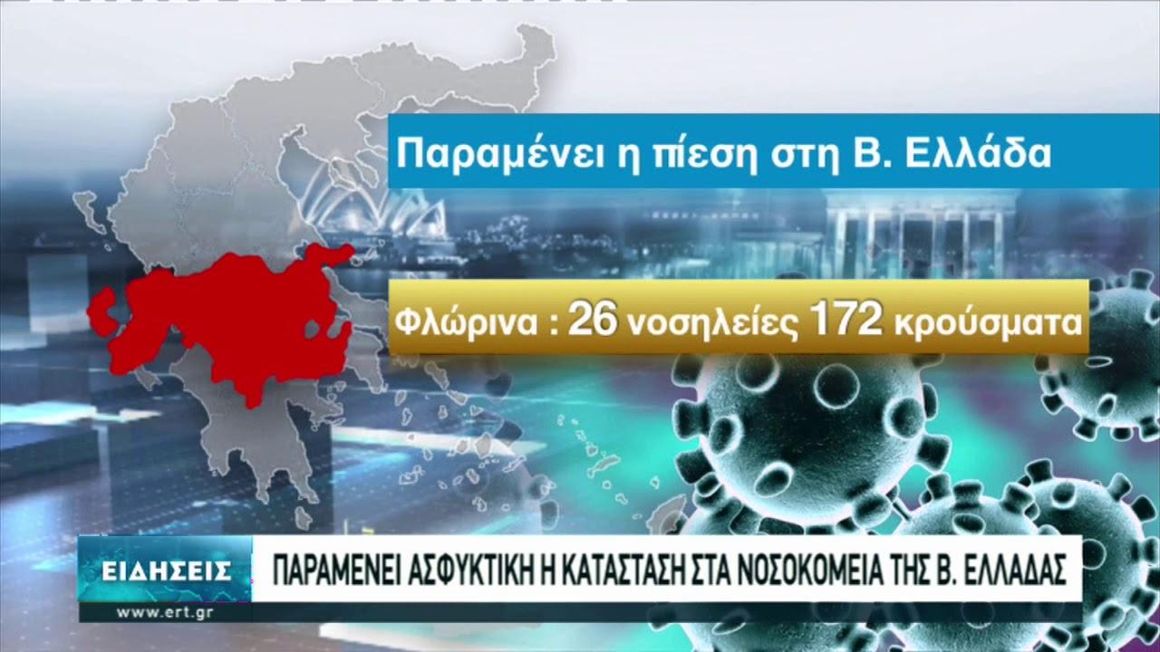 Μαύρος Νοέμβριος για την πορεία της πανδημίας στην Ελλάδα | 06/12/2020 | ΕΡΤ
