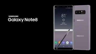 root note 8 android 9 español - Thủ thuật máy tính - Chia sẽ