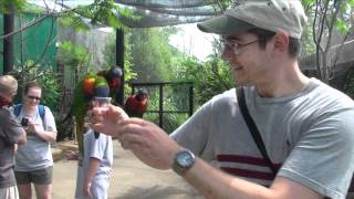 Holding Rainbow Lorikeets at Louisville Zoo