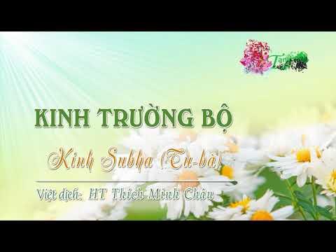 10. Kinh Tu-bà (Subha sutta)
