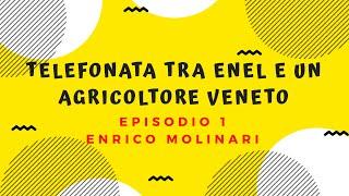 Telefonata Tra Enel E Un Veneto