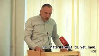 preview picture of video '9. sjednica GV Daruvar - Pitanje Mate Karaula (HDZ)'