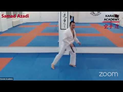 Online Karate Training via Zoom mit Samad Azadi aus der Karate Academy Hamburg