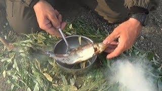 Смотреть онлайн Как приготовить копчением рыбу на природе